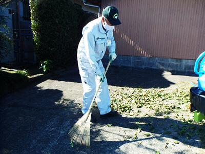 こぼれ葉清掃
